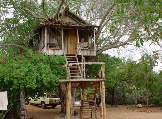 Treehouse at the camp